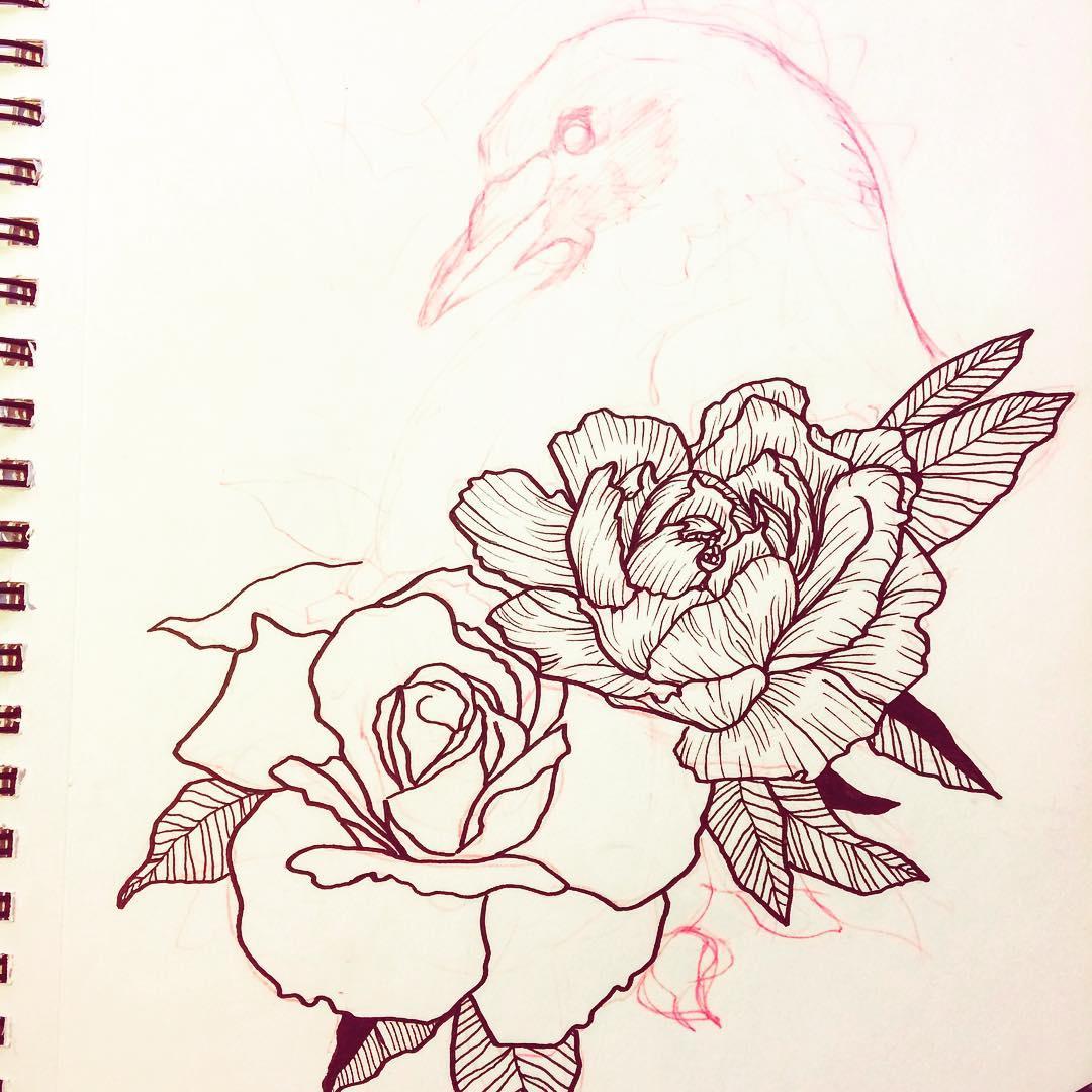 大腿简单线条猫咪纹身图案         玫瑰蜘蛛花瓶纹身手稿